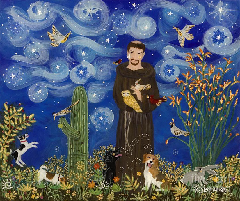 St. Francis Every Life Matters